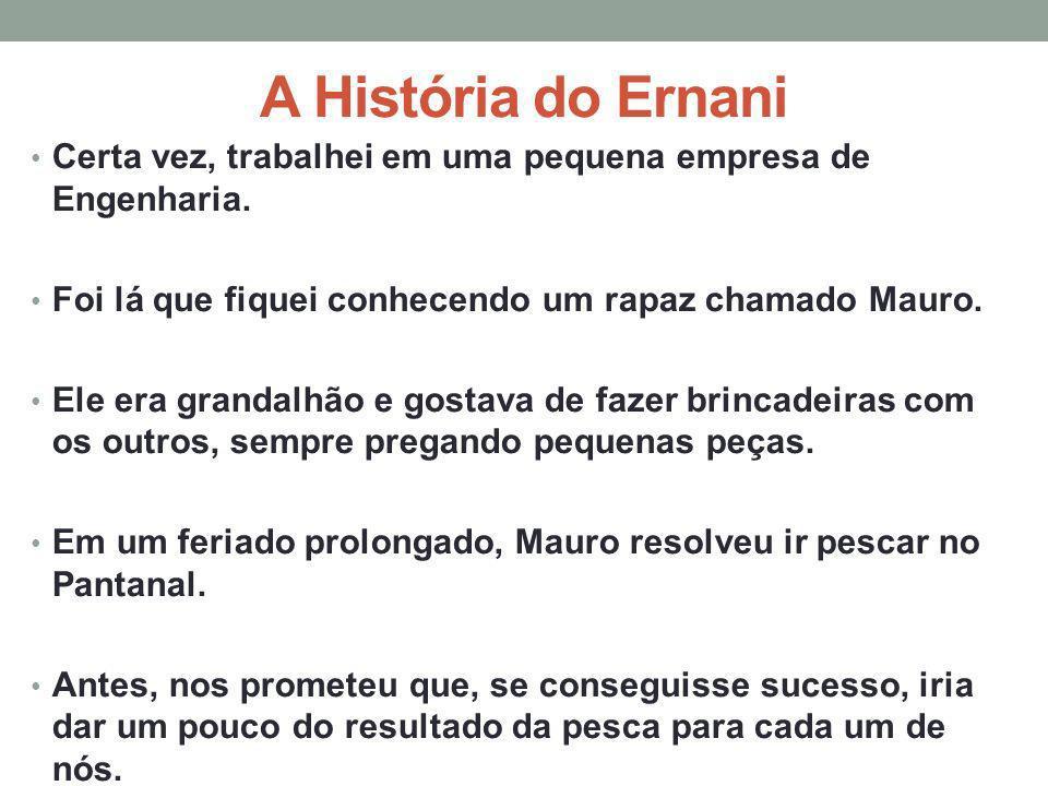 A História do Ernani Certa vez, trabalhei em uma pequena empresa de Engenharia. Foi lá que fiquei conhecendo um rapaz chamado Mauro. Ele era grandalhã