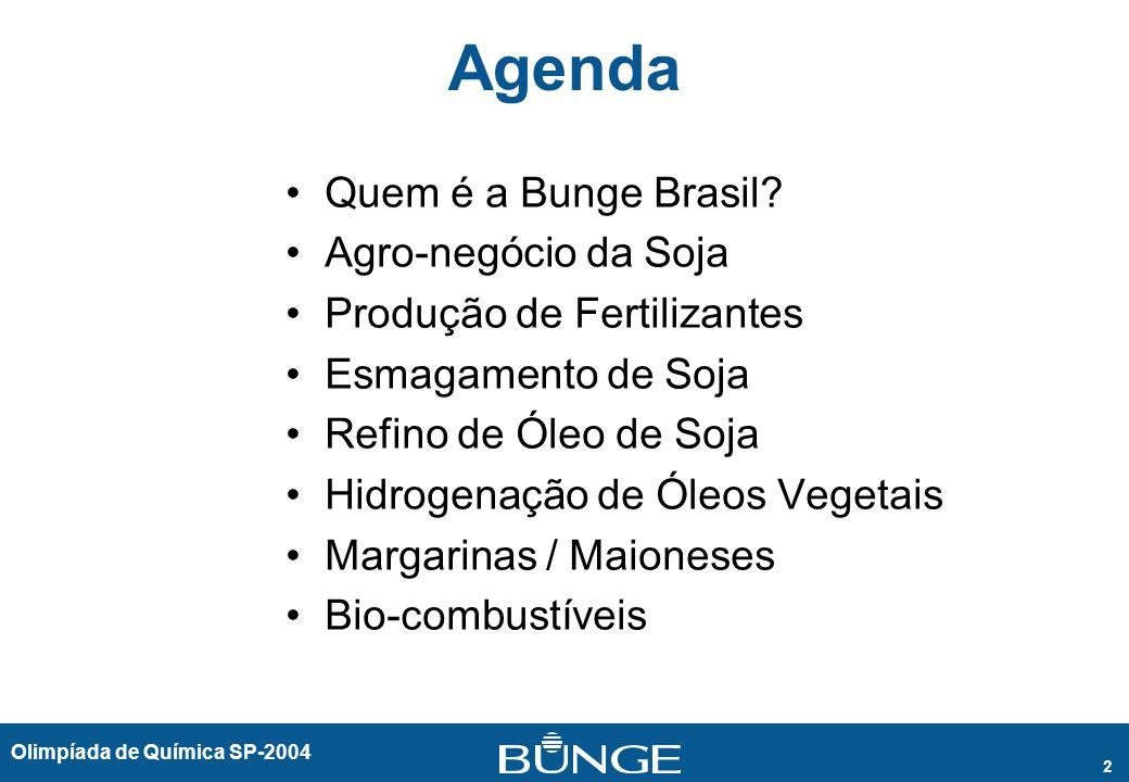 Olimpíada de Química SP-2004 2 Agenda Quem é a Bunge Brasil? Agro-negócio da Soja Produção de Fertilizantes Esmagamento de Soja Refino de Óleo de Soja