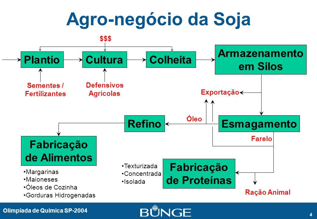 Olimpíada de Química SP-2004 4 Agro-negócio da Soja PlantioCulturaColheita Armazenamento em Silos EsmagamentoRefino Fabricação de Alimentos Fabricação