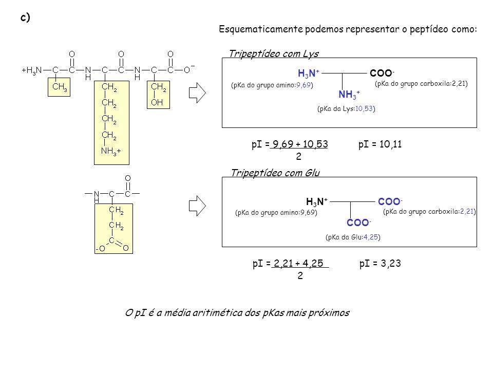 d) Para que polo migraria o tripeptídeo numa eletroforese feita em pH=7 H3N+H3N+ COO - NH 3 + (pKa da Lys:10,53) (pKa do grupo amino:9,69) (pKa do grupo carboxila:2,21) pH=pI: carga neutra pH>pI: carga negativa pH<pI: carga positva Numa eletroforese em pH=7.0 (pH < pI ) o tripeptídeo encontra-se carregado positivamente e portanto ele migra para o polo negativo.