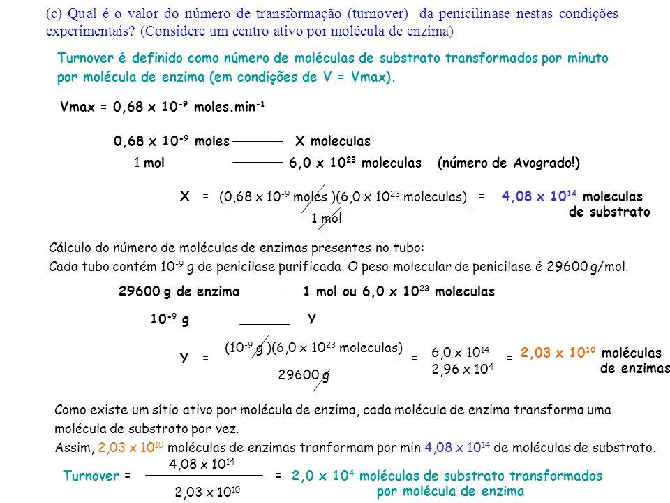 0,68 x 10 -9 molesX moleculas 1 mol 6,0 x 10 23 moleculas (número de Avogrado!) X=4,08 x 10 14 moleculas de substrato Cálculo do número de moléculas de enzimas presentes no tubo: Cada tubo contém 10 -9 g de penicilase purificada.