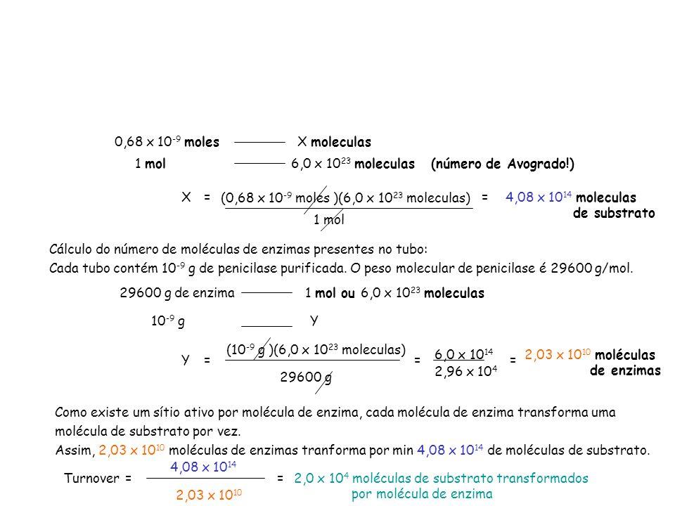 0,68 x 10 -9 molesX moleculas 1 mol 6,0 x 10 23 moleculas (número de Avogrado!) X=4,08 x 10 14 moleculas de substrato Cálculo do número de moléculas d