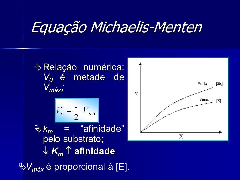 Equação Michaelis-Menten Relação numérica: V 0 é metade de V máx ; Relação numérica: V 0 é metade de V máx ; k m = afinidade pelo substrato; k m = afi