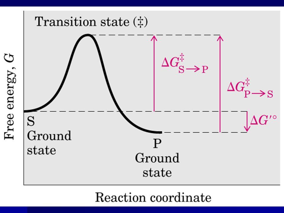 Significado de K m e V máx Equação Michaelis e Menten = dependência hiperbólica; Equação Michaelis e Menten = dependência hiperbólica; Mecanismos de reação diferentes catalisam reações com 6 ou 8 passos; Mecanismos de reação diferentes catalisam reações com 6 ou 8 passos; Significado e magnitude de V máx e K m varia; Significado e magnitude de V máx e K m varia; K m : depende de aspectos específicos do mecanismo de reação.