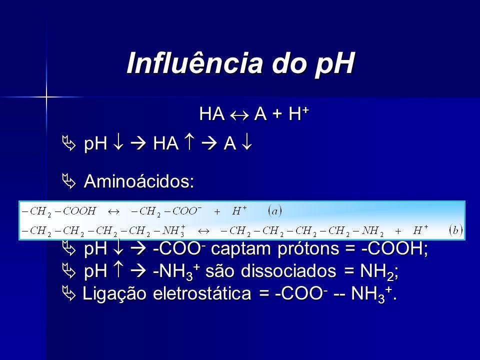 Influência do pH HA A + H + pH HA A pH HA A Aminoácidos: Aminoácidos: pH -COO - captam prótons = -COOH; pH -COO - captam prótons = -COOH; pH -NH 3 + s