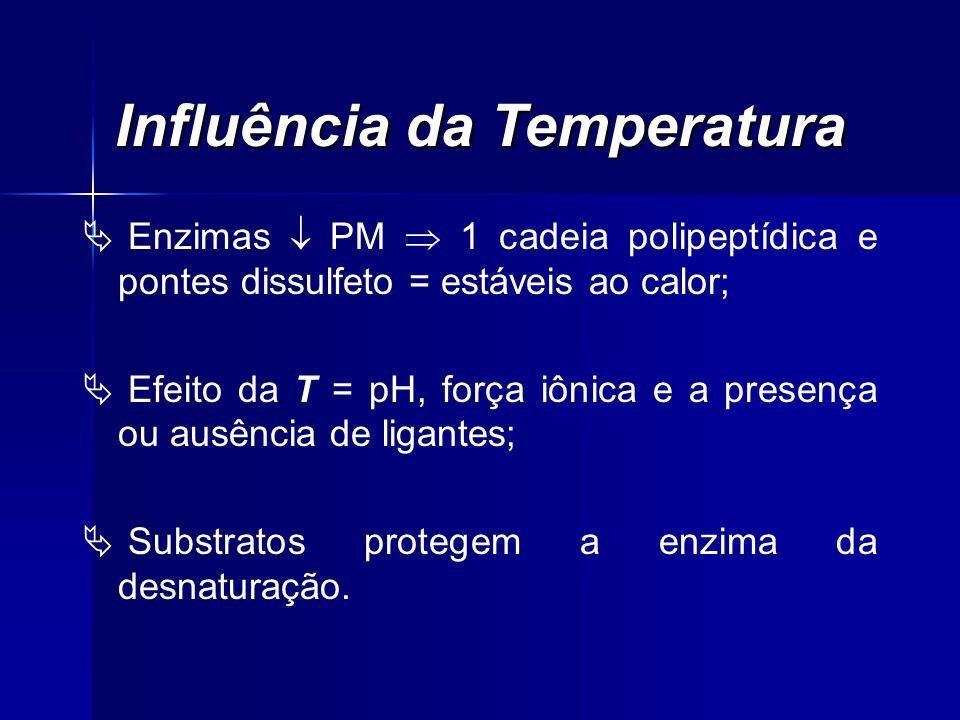 Influência da Temperatura Enzimas PM 1 cadeia polipeptídica e pontes dissulfeto = estáveis ao calor; Efeito da T = pH, força iônica e a presença ou au