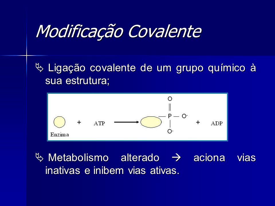 Modificação Covalente Ligação covalente de um grupo químico à sua estrutura; Ligação covalente de um grupo químico à sua estrutura; Metabolismo altera