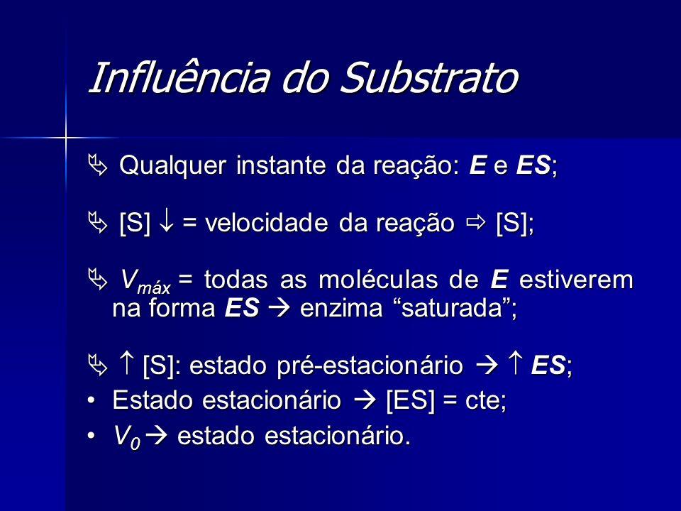 Influência do Substrato Qualquer instante da reação: E e ES; Qualquer instante da reação: E e ES; [S] = velocidade da reação [S]; [S] = velocidade da
