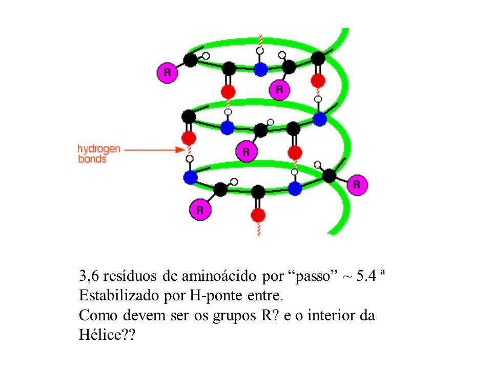 3,6 resíduos de aminoácido por passo ~ 5.4 ª Estabilizado por H-ponte entre. Como devem ser os grupos R? e o interior da Hélice??