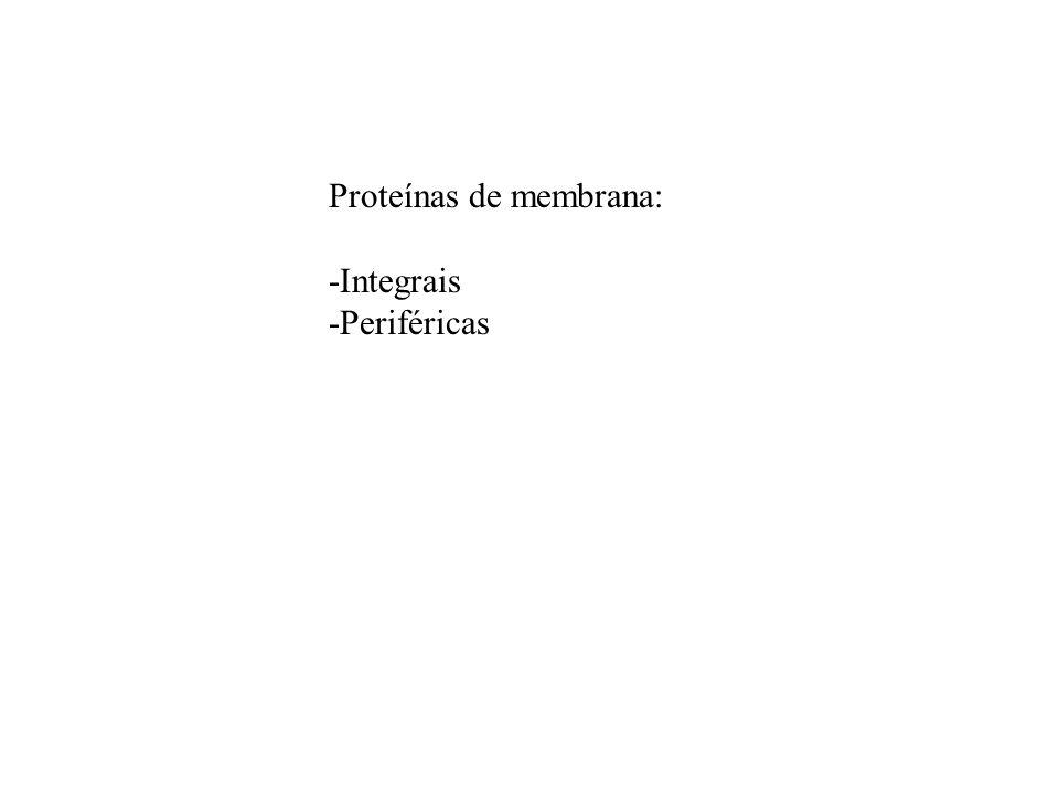 Proteínas de membrana: -Integrais -Periféricas