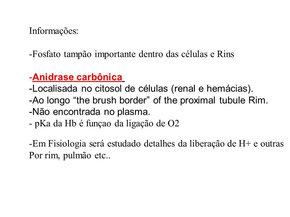 Informações: -Fosfato tampão importante dentro das células e Rins -Anidrase carbônica -Localisada no citosol de células (renal e hemácias). -Ao longo