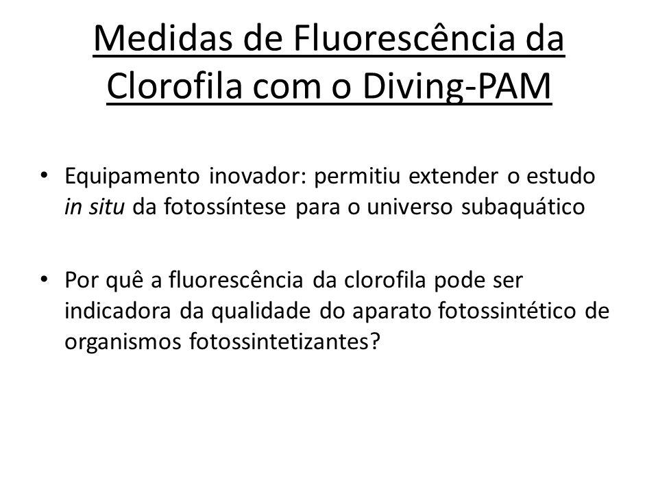 Medidas de Fluorescência da Clorofila com o Diving-PAM Equipamento inovador: permitiu extender o estudo in situ da fotossíntese para o universo subaqu
