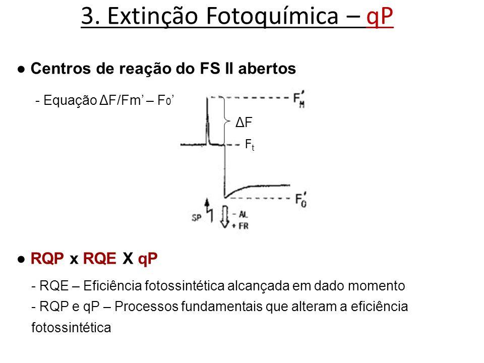 3. Extinção Fotoquímica – qP Centros de reação do FS II abertos FtFt ΔFΔF - Equação ΔF/Fm – F 0 RQP x RQE X qP - RQE – Eficiência fotossintética alcan