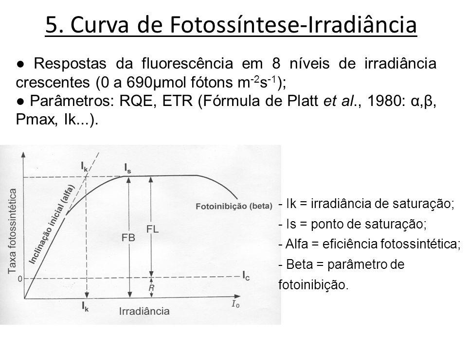 5. Curva de Fotossíntese-Irradiância Respostas da fluorescência em 8 níveis de irradiância crescentes (0 a 690μmol fótons m -2 s -1 ); Parâmetros: RQE