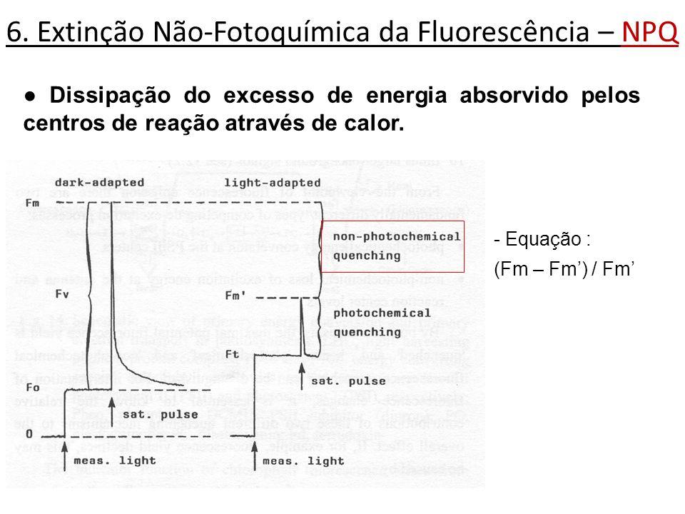 6. Extinção Não-Fotoquímica da Fluorescência – NPQ Dissipação do excesso de energia absorvido pelos centros de reação através de calor. - Equação : (F