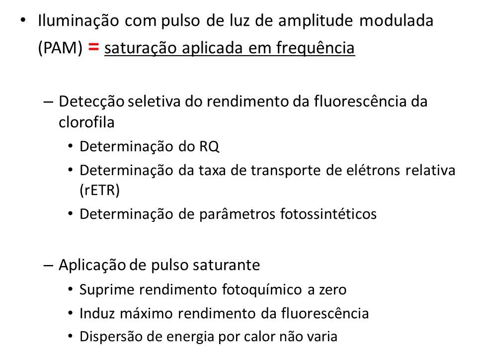 Iluminação com pulso de luz de amplitude modulada (PAM) = saturação aplicada em frequência – Detecção seletiva do rendimento da fluorescência da cloro