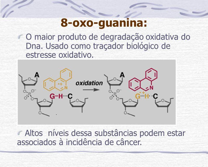 8-oxo-guanina: O maior produto de degradação oxidativa do Dna. Usado como traçador biológico de estresse oxidativo. Altos níveis dessa substâncias pod