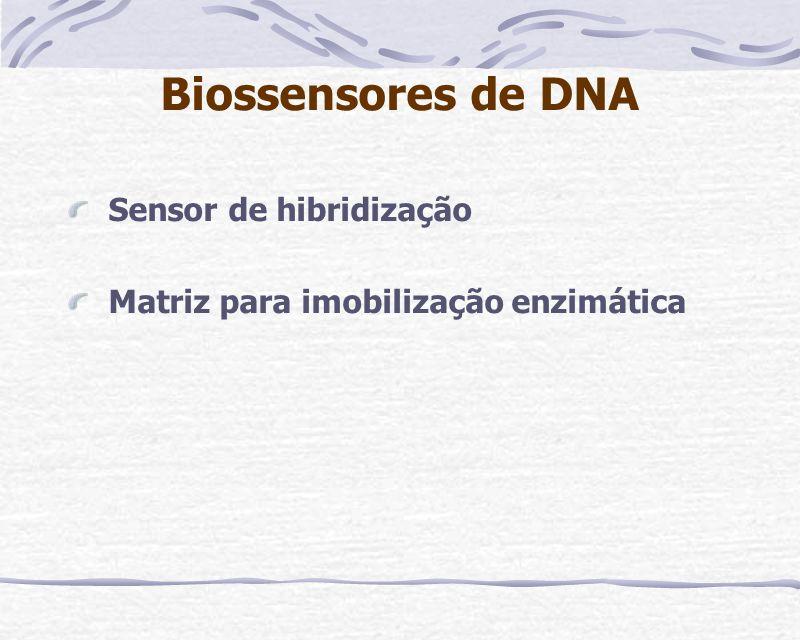 Biossensores de DNA Sensor de hibridização Matriz para imobilização enzimática