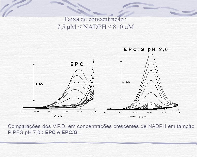 Comparações dos V.P.D. em concentrações crescentes de NADPH em tampão PIPES pH 7,0 : EPC e EPC/G. Faixa de concentração : 7,5 M NADPH 810 M