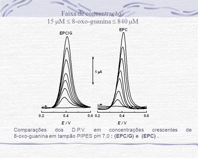 Comparações dos D.P.V. em concentrações crescentes de 8-oxo-guanina em tampão PIPES pH 7,0 : (EPC/G) e (EPC). Faixa de concentração : 15 M 8-oxo-guani