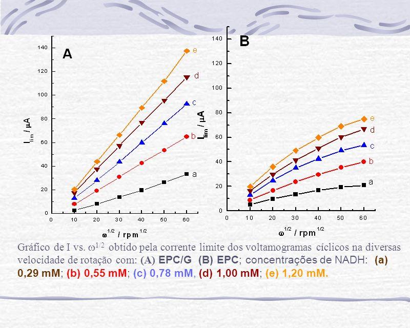 Gráfico de I vs. 1/2 obtido pela corrente limite dos voltamogramas cíclicos na diversas velocidade de rotação com: (A) EPC/G (B) EPC; concentrações de