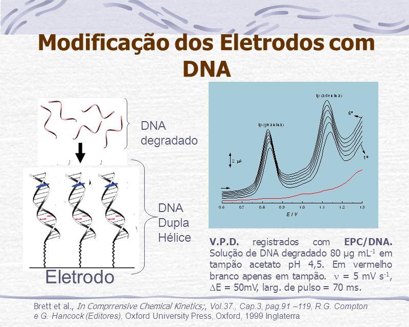 Modificação dos Eletrodos com DNA Eletrodo DNA Dupla Hélice DNA degradado V.P.D. registrados com EPC/DNA. Solução de DNA degradado 80 µg mL -1 em tamp