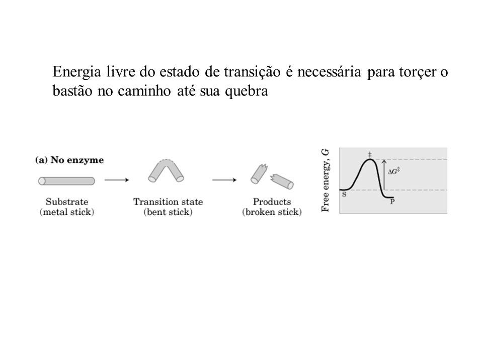 Energia livre do estado de transição é necessária para torçer o bastão no caminho até sua quebra
