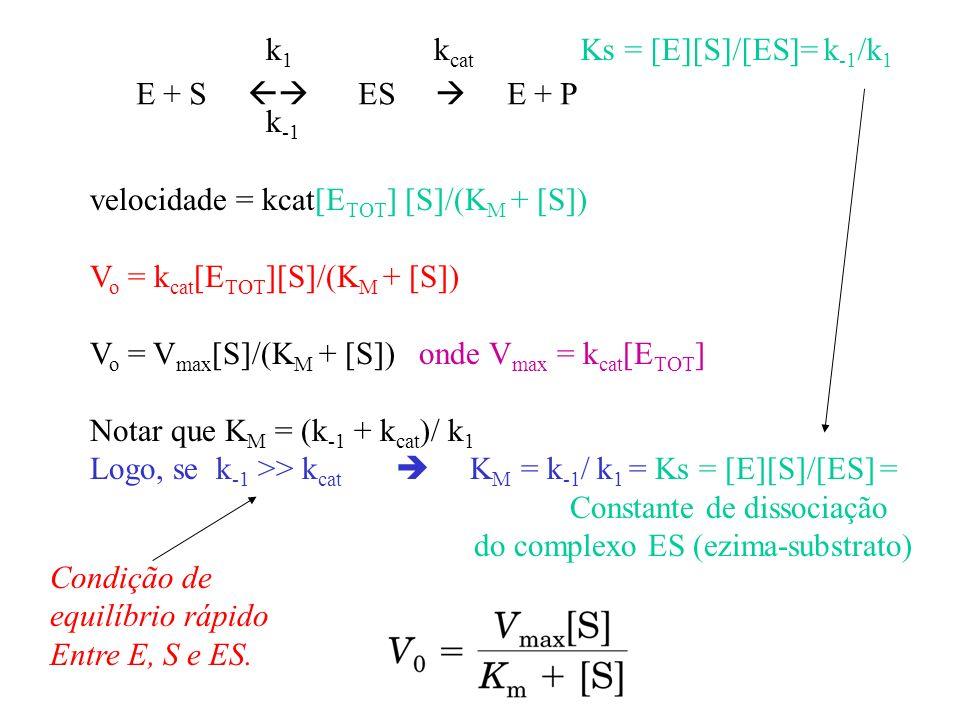 E + S ES E + P Ks = [E][S]/[ES]= k -1 /k 1 k cat velocidade = kcat[E TOT ] [S]/(K M + [S]) V o = k cat [E TOT ][S]/(K M + [S]) V o = V max [S]/(K M +
