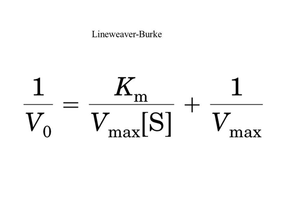 Lineweaver-Burke