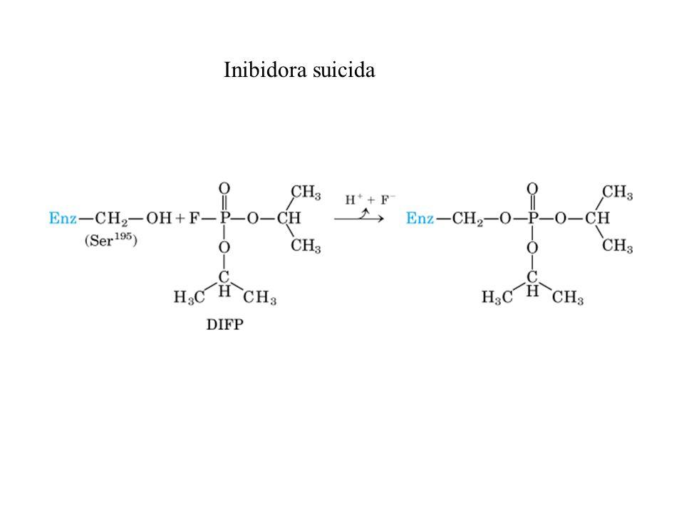 Inibidora suicida