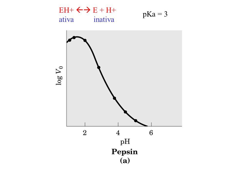 EH+ E + H+ ativa inativa pKa = 3