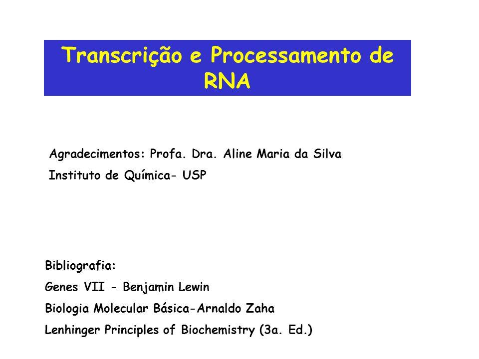 Transcrição e Processamento de RNA Bibliografia: Genes VII - Benjamin Lewin Biologia Molecular Básica-Arnaldo Zaha Lenhinger Principles of Biochemistr