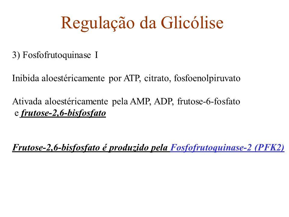 Regulação da Glicólise 3) Fosfofrutoquinase I Inibida aloestéricamente por ATP, citrato, fosfoenolpiruvato Ativada aloestéricamente pela AMP, ADP, fru