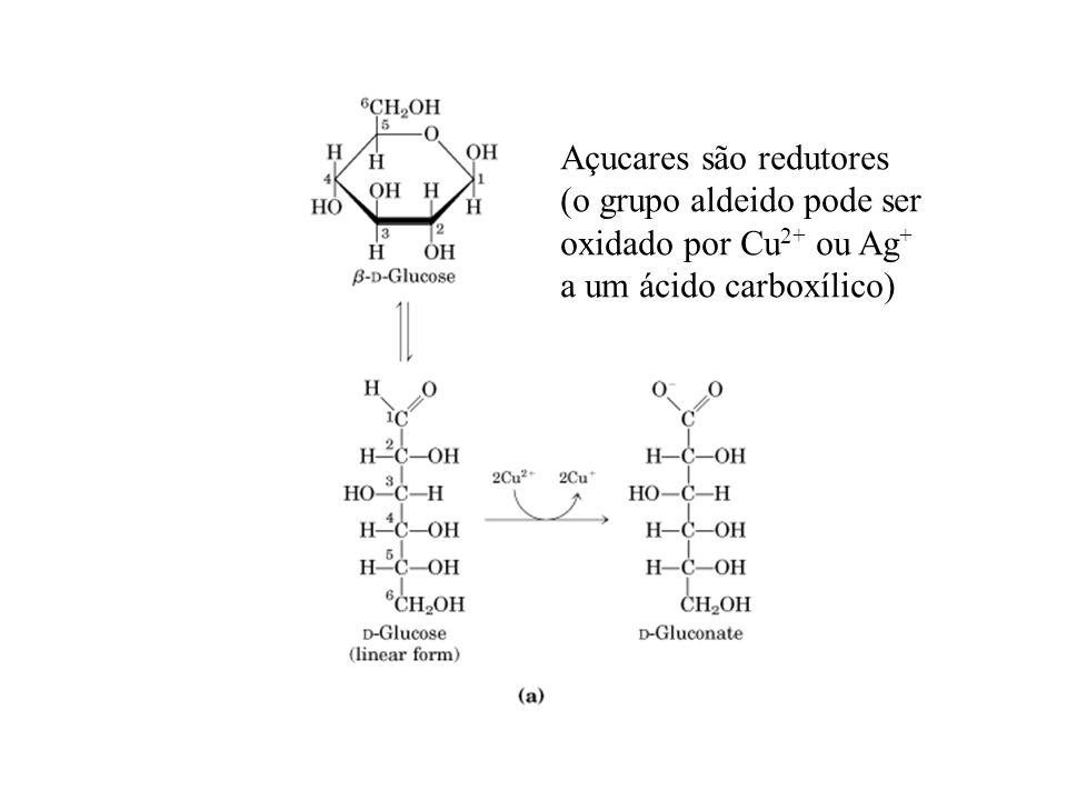 Açucares são redutores (o grupo aldeido pode ser oxidado por Cu 2+ ou Ag + a um ácido carboxílico)