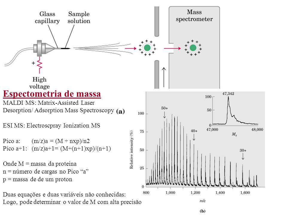 Espectometria de massa MALDI MS: Matrix-Assisted Laser Desorption/ Adsorption Mass Spectroscopy ESI MS: Electroscpray Ionization MS Pico a: (m/z)a = (