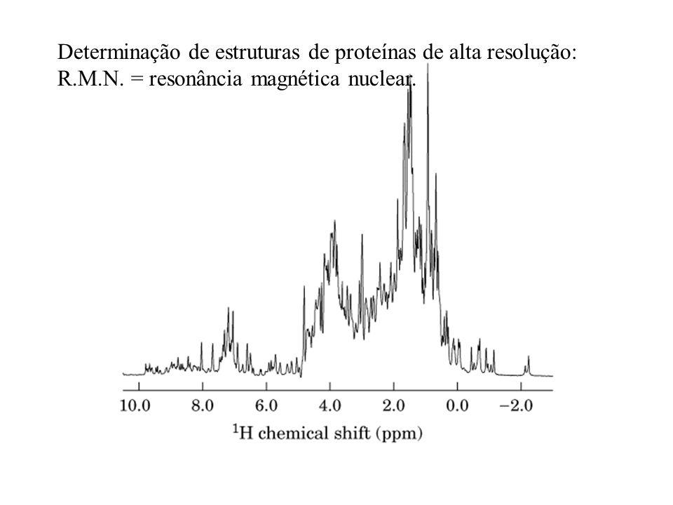 Determinação de estruturas de proteínas de alta resolução: R.M.N. = resonância magnética nuclear.
