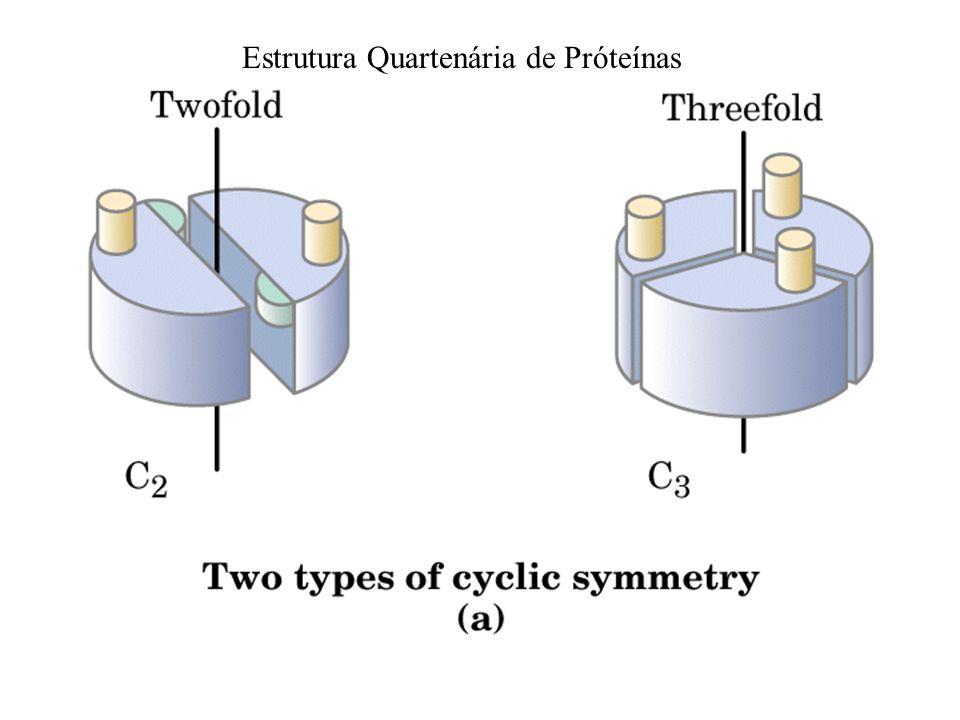 Estrutura Quartenária de Próteínas
