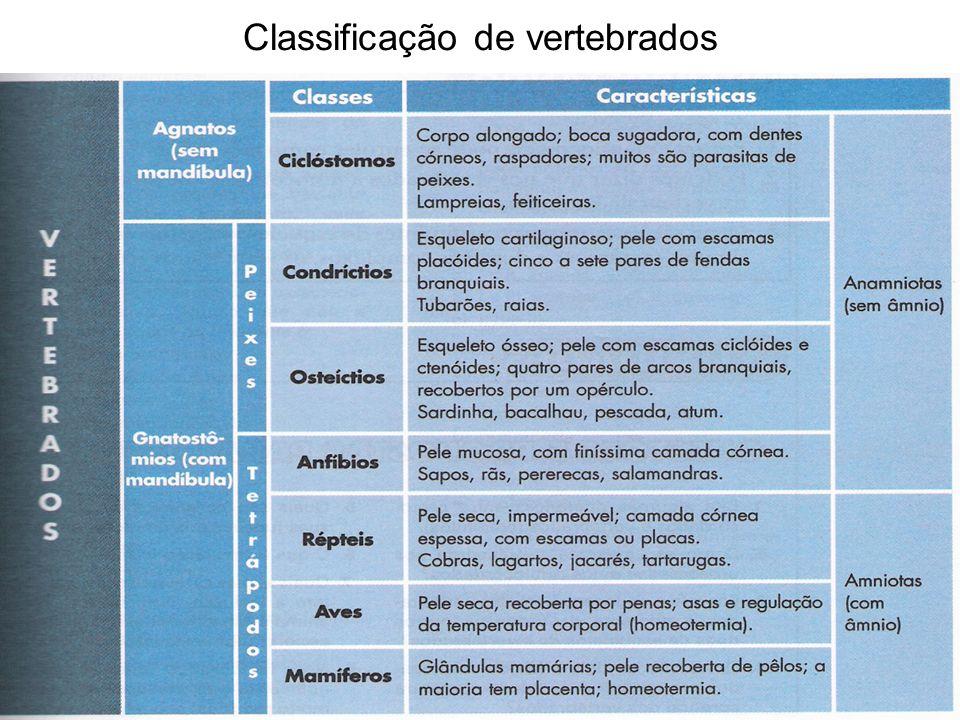 Classificação de vertebrados