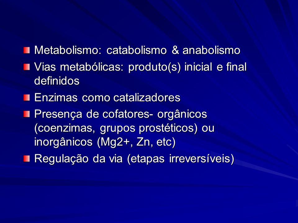Metabolismo: catabolismo & anabolismo Vias metabólicas: produto(s) inicial e final definidos Enzimas como catalizadores Presença de cofatores- orgânic