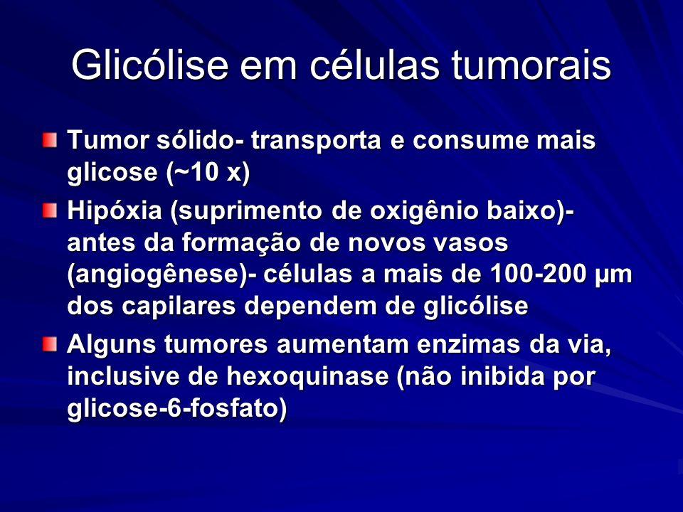 Glicólise em células tumorais Tumor sólido- transporta e consume mais glicose (~10 x) Hipóxia (suprimento de oxigênio baixo)- antes da formação de nov