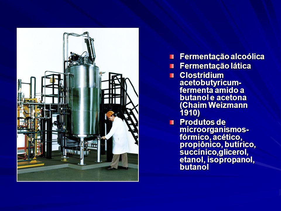 Fermentação alcoólica Fermentação lática Clostridium acetobutyricum- fermenta amido a butanol e acetona (Chaim Weizmann 1910) Produtos de microorganis