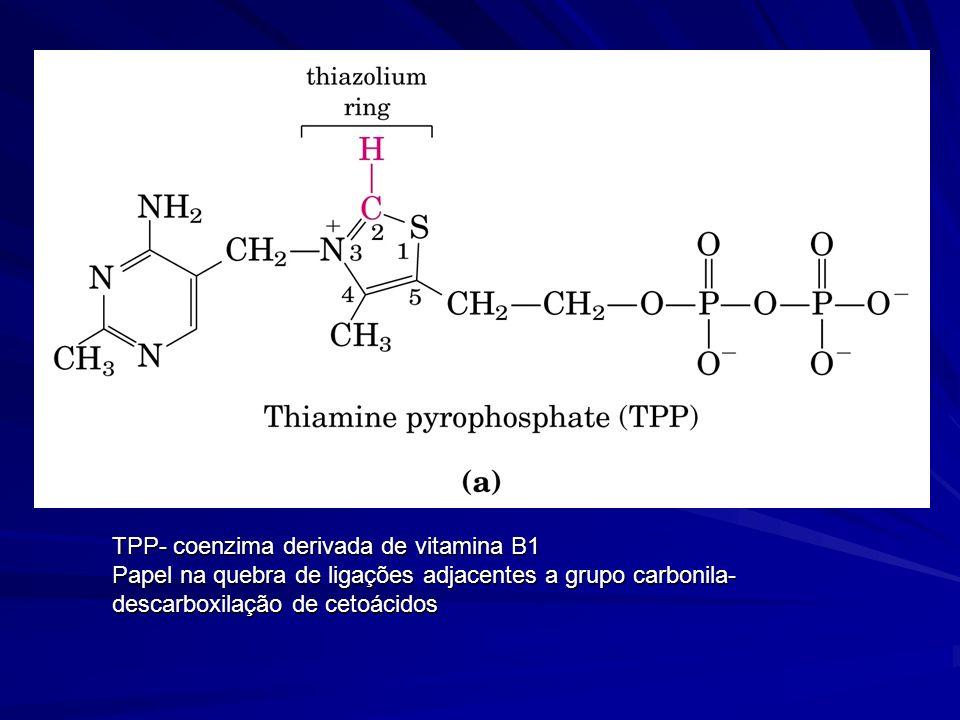 TPP- coenzima derivada de vitamina B1 Papel na quebra de ligações adjacentes a grupo carbonila- descarboxilação de cetoácidos