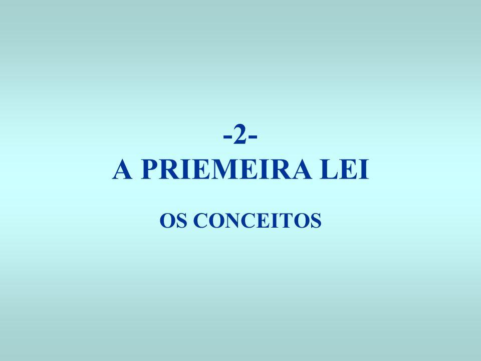 -2- A PRIEMEIRA LEI OS CONCEITOS
