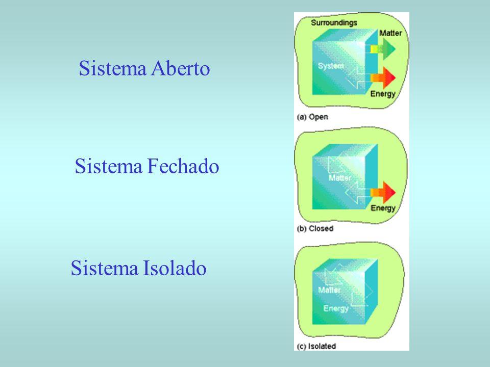 Sistema aberto : fronteiras permeáveis à passagem de matéria Sistema fechado : fronteiras impermeáveis à passagem de matéria Podem trocar Energia com a Vizinhança Sistema isolado : não tem contato mecânico, nem térmico com suas vizinhanças