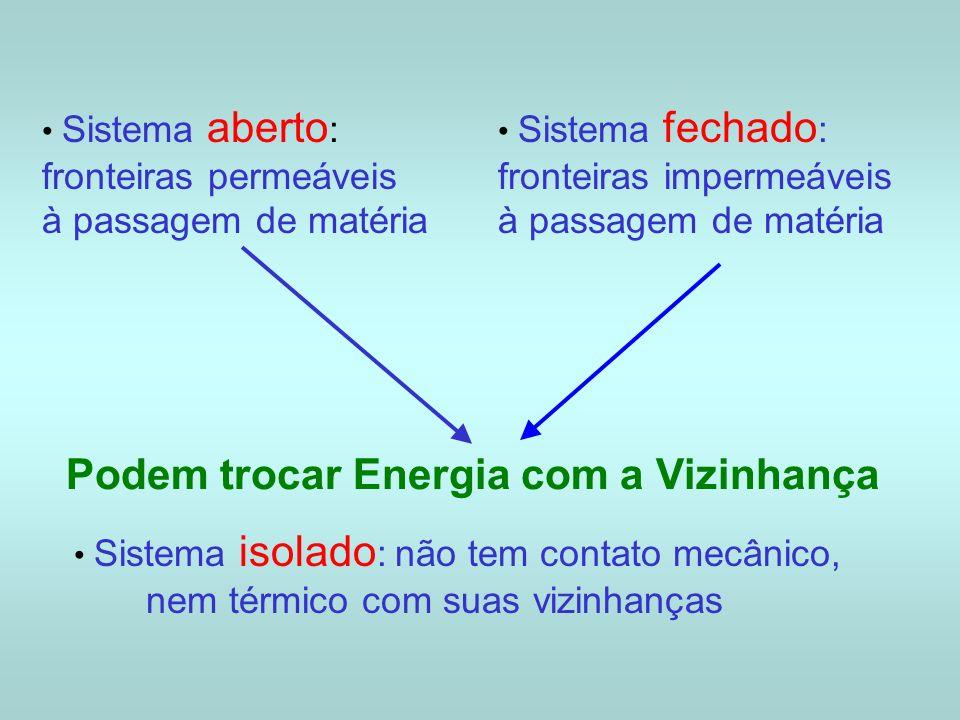 Sistema aberto : fronteiras permeáveis à passagem de matéria Sistema fechado : fronteiras impermeáveis à passagem de matéria Podem trocar Energia com