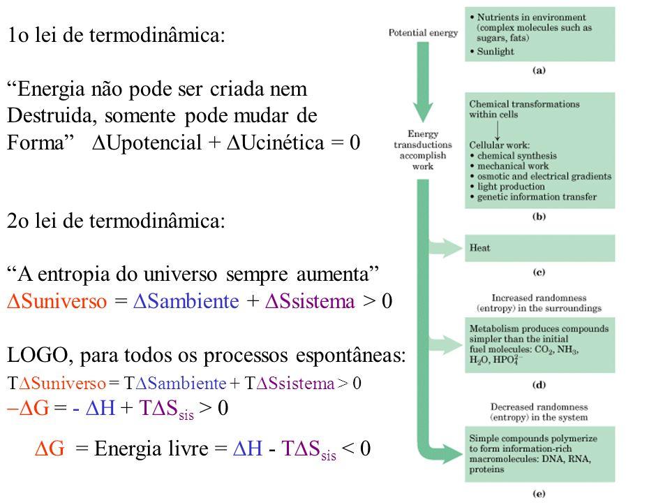 1o lei de termodinâmica: Energia não pode ser criada nem Destruida, somente pode mudar de Forma Upotencial + Ucinética = 0 2o lei de termodinâmica: A entropia do universo sempre aumenta Suniverso = Sambiente + Ssistema > 0 LOGO, para todos os processos espontâneas: Suniverso = T Sambiente + T Ssistema > 0 G = - H + T S sis > 0 G = Energia livre = H - T S sis < 0