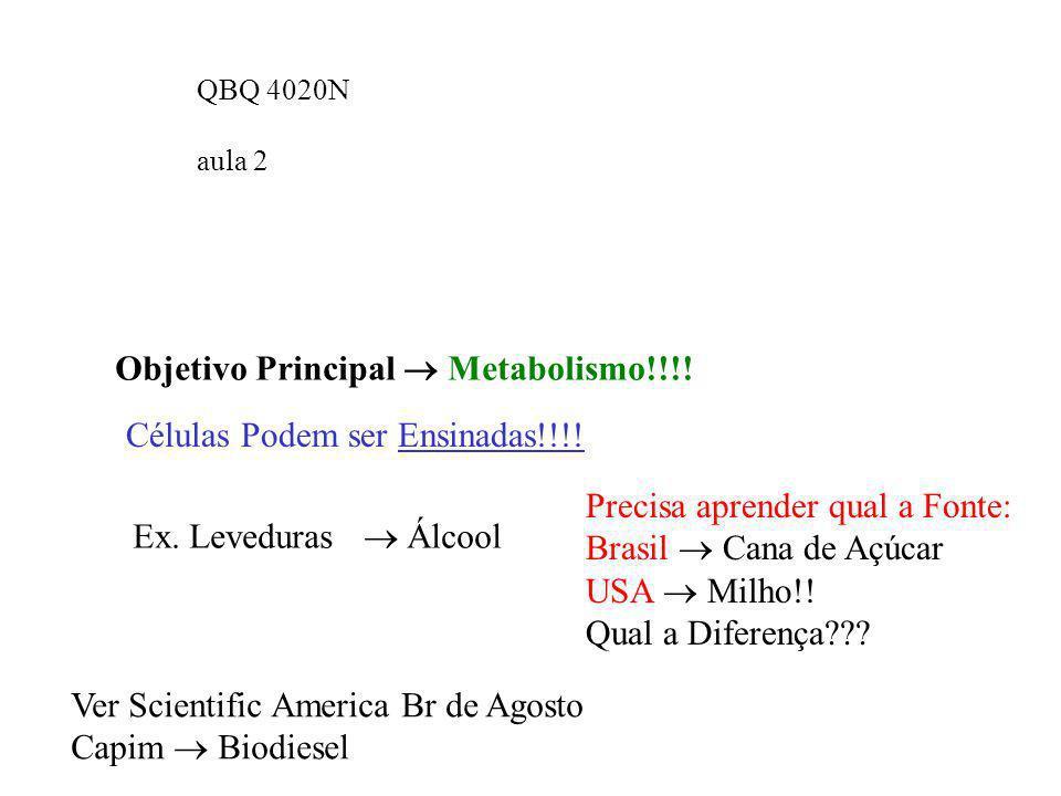 QBQ 4020N aula 2 Objetivo Principal Metabolismo!!!! Células Podem ser Ensinadas!!!! Ex. Leveduras Álcool Precisa aprender qual a Fonte: Brasil Cana de