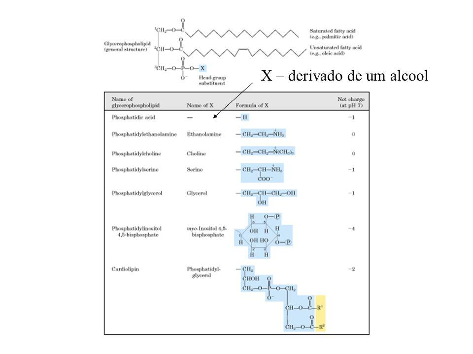 X – derivado de um alcool