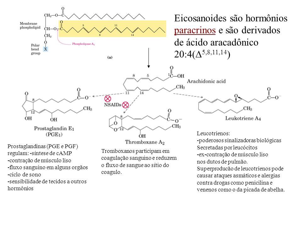 Eicosanoides são hormônios paracrinos e são derivados de ácido aracadônico 20:4( 5,8,11,14 ) Prostaglandinas (PGE e PGF) regulam: -síntese de cAMP -co