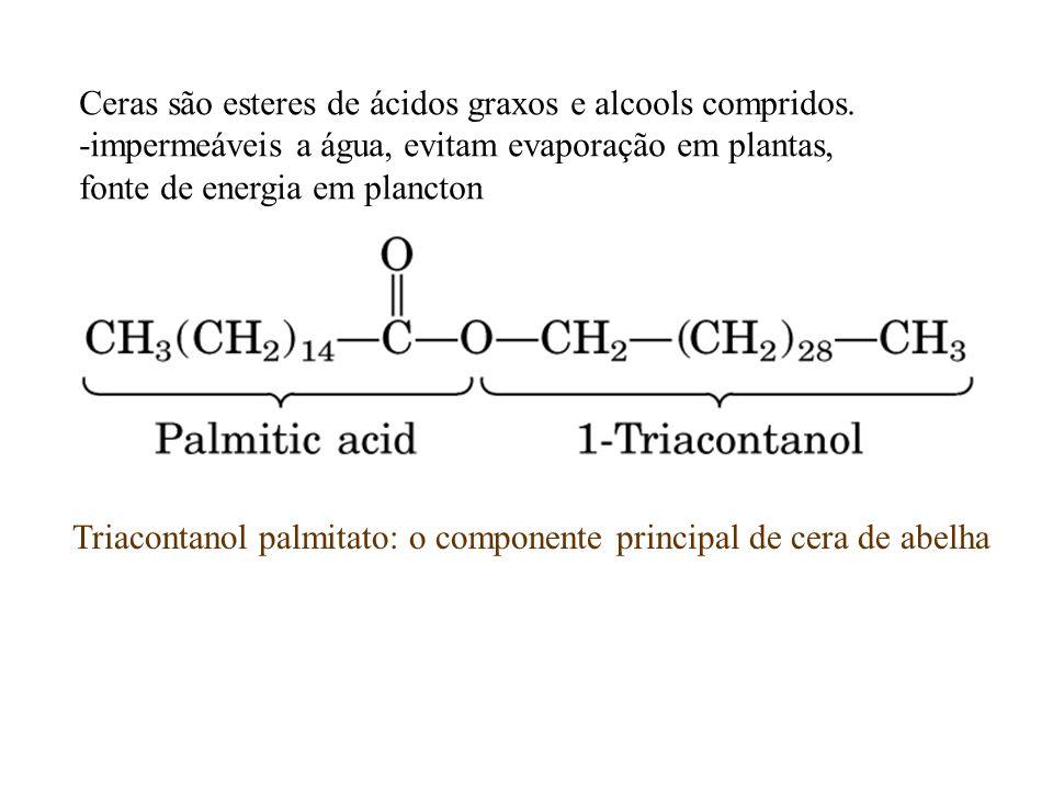 Triacontanol palmitato: o componente principal de cera de abelha Ceras são esteres de ácidos graxos e alcools compridos. -impermeáveis a água, evitam
